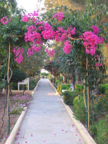 Malta Wedding Planner Rosemarie Lavish Gardens Harbour Views (5)